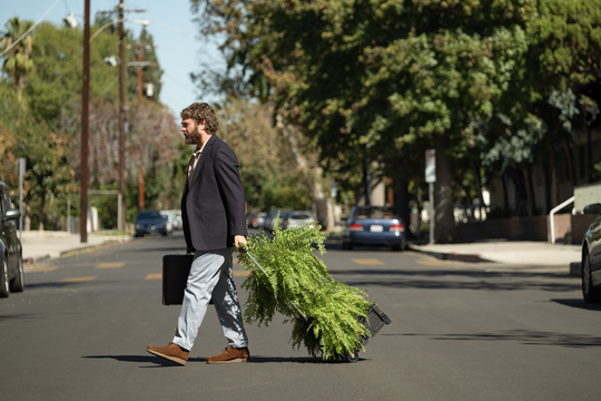 """In """"Between Two Ferns: The Movie,"""" Zach Galifianakis takes his ferns on the road to conduct interviews with stars including Brie Larson and Peter Dinklage."""