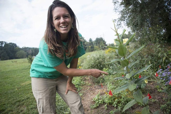 Emily Sampson is the caretaker of the Monarch Waystation in Veterans Park, which will host one of two events centered around the migrating pollinators during the month of October.