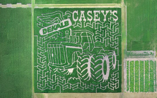 The 2019 corn maze at Giesley Frams in Bondurant is in the shape of an Iowa-built tractor that is still in use on the farm today.