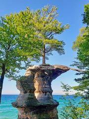 A 250-year-old white pine stands on Chapel Rock in Pictured Rocks National Lakeshore in Michigan's Upper Peninsula. The pine's roots connect the tree to the mainland.