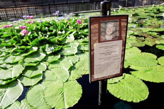 A photo and sign honoring the life and memory of Ingrid Flippin is seen at the International Waterlilly Collection at Civic League Park in 2007. Many of Ken Landon's hybrid creations honor local people he has known. Flippin regularly visited the park to enjoy the waterlillies.