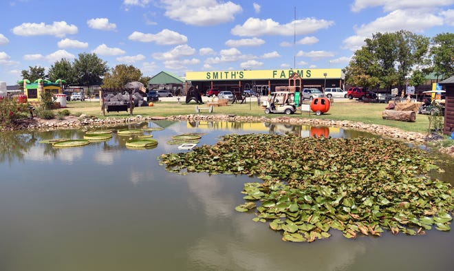 Smith's Gardentown of Wichita Falls has once again been named to the Top 100 garden centers in North America, according to Garden Center magazine.