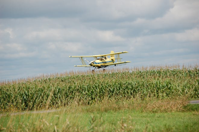 Wet field conditions can't stop this aerial applicator from making a low pass as it dusts a corn field in Calumet County.