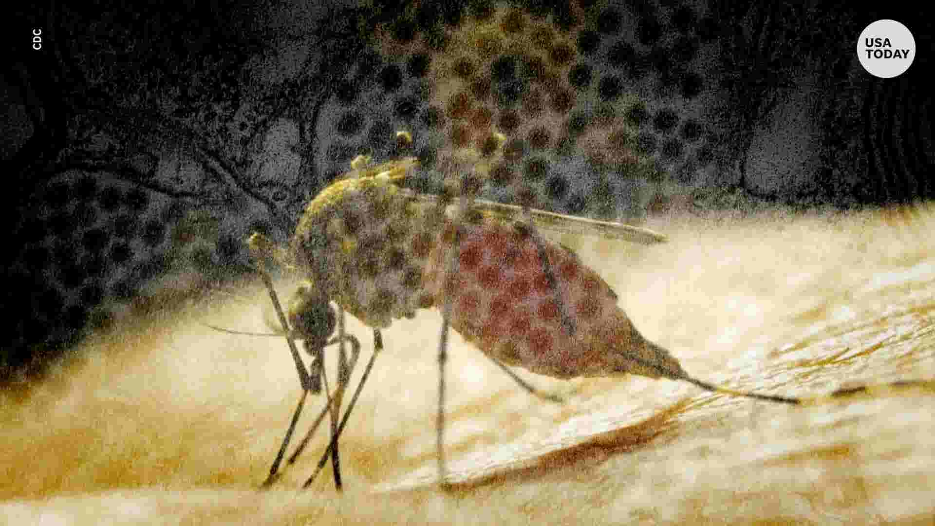 An often deadly form of mosquito-borne encephalitis has flared up across the nation and is already present in Wisconsin, officials say