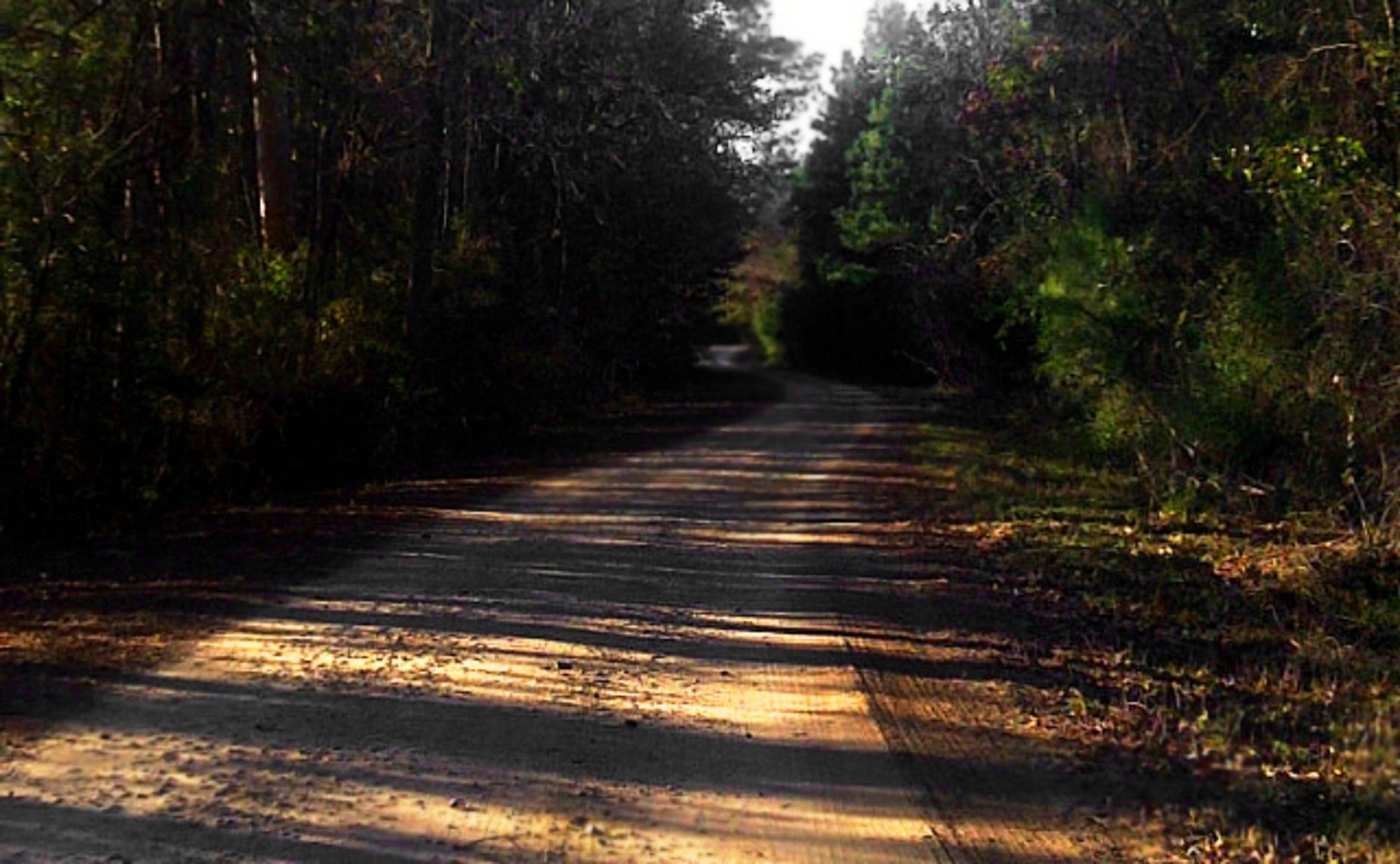 Demon Road in Huntsville