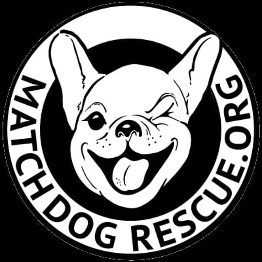 MatchDog Rescue is having its inaugural reunion on Oct. 13 at Freedom Park in Medford. The two-year-old foster-based rescue has adopted out about 1,400 dogs since its inception.