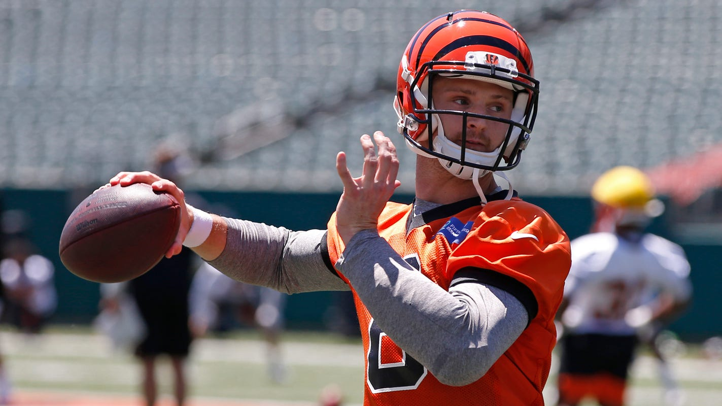 Backup quarterback Jeff Driskel brings versatile skill set to Lions