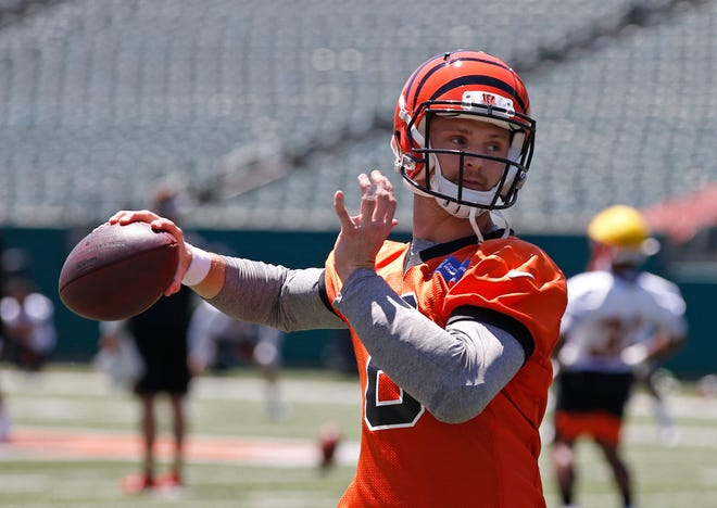 Jeff Driskel was signed by the Lions earlier this week after being cut by the Bengals.