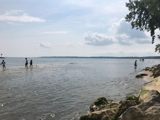 Water covered a good portion of East Harbor State Park's beach area Aug. 17. Lake Erie's record high water levels caused widespread coastal erosion and flooding at state parks and communities along the lake this summer.
