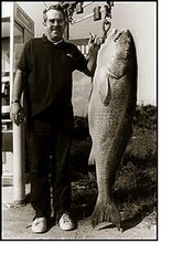 In 1984, a giant red drum was caught off Hatteras Island that weighed 94 pounds, 2 ounces. This is a world record for all tackle.