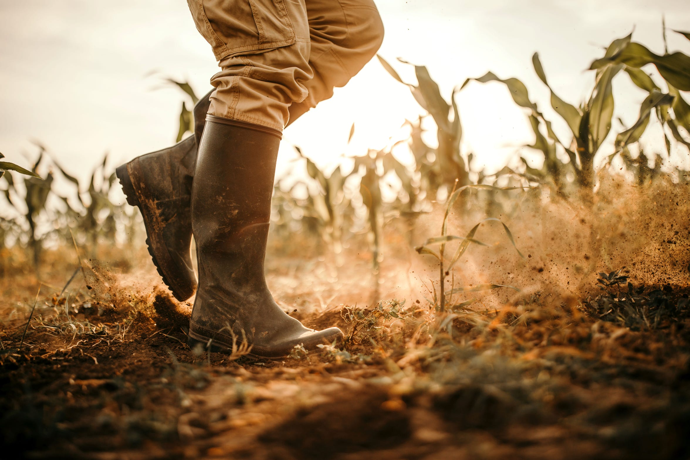 Agricultural workers face higher risks from heat exposure.