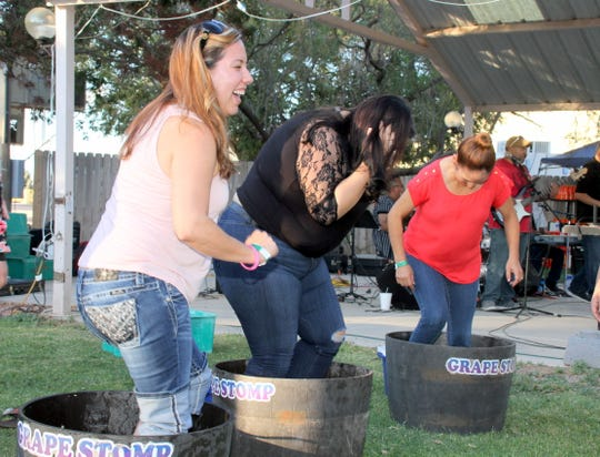 The grape stomping contest is one of the fun attractions during the Lescombes Family Wine Festival.