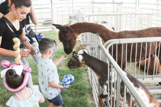 Children fed the animals at the petting zoo by Runyan Ranch at the Otero County Fair Rodeo on Thursday, Sept. 19, 2019.
