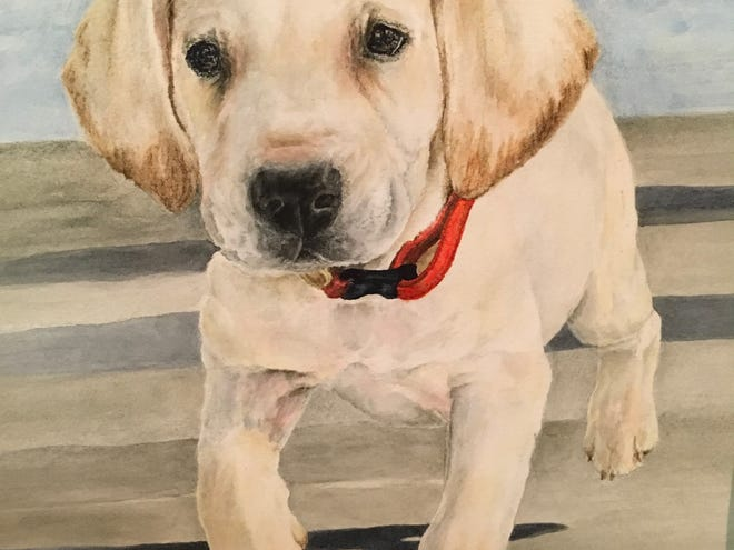 Bobbie Buckingham's puppy watercolor was accepted in the Tallahassee Watercolor Society's annual Tri-State Show in 2018.