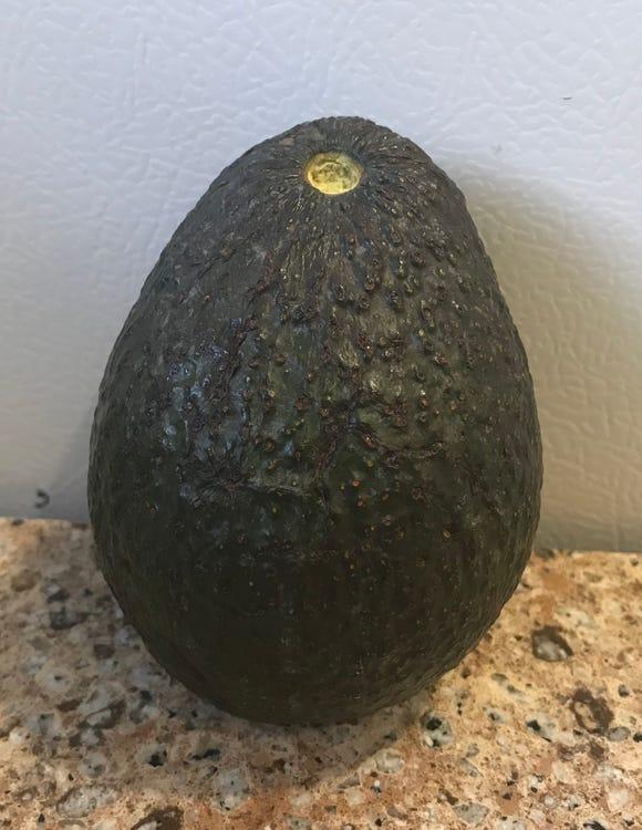 A lovely avocado