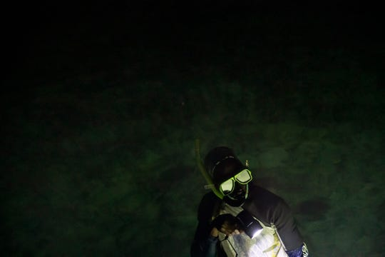 """Nicholas Bingham enters the water to go night spearfishing, which is banned, in Stewart Town, Jamaica on Feb. 15, 2019. Bingham says he has to resort to illegal night spearfishing to make up for lost wages from the sanctuary's restrictions. """"From the time I was born fishing is all I do. It's my bread and butter,"""" said Bingham. """"There's not many other jobs to do. What am I going to do, take up a gun?"""""""