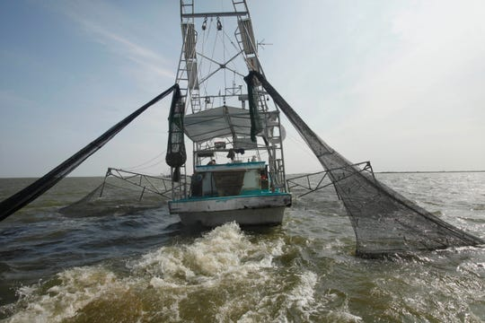 FILE - In an Aug. 16, 2010 file photo, shrimpers haul in their catch in Bastian Bay, near Empire, La., on the first day of shrimping season. It will be months before state officials know whether losses from floods and spillway openings qualify Louisiana as a fisheries disaster.