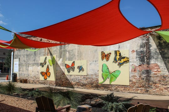 The unvacant lot in Thomasville has been transformed at the Bug Out.
