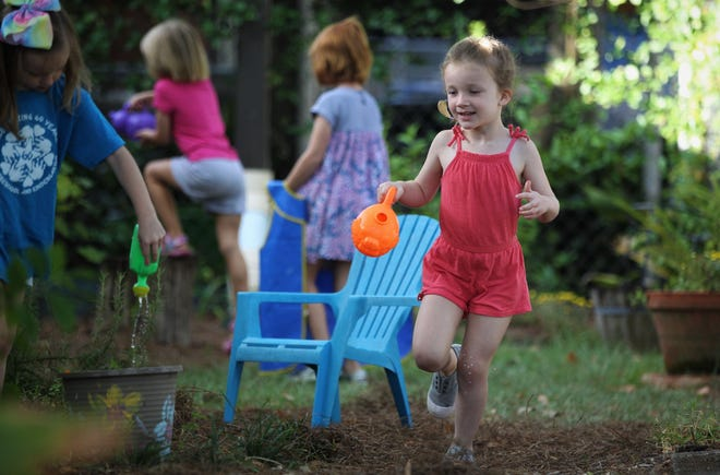 Taylor Kate Gay participates in gardening during her 4-year-olds class at Faith Preschool, on the corner of John Knox Road and Meridian Road, celebrated its 60th anniversary over the weekend of Sept. 20-22, 2019.