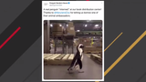 Penguin Random House recently shared video of its new penguin intern.