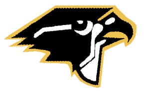 Burlington Township Falcon
