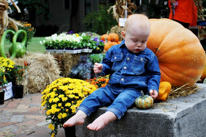 Ten-month-old Easton Fitzgeralds inspects a tiny pumpkin at the 22nd annual Cider Days on Walnut Street in Springfield Sunday, Sept. 22, 2019, in Springfield, Mo.