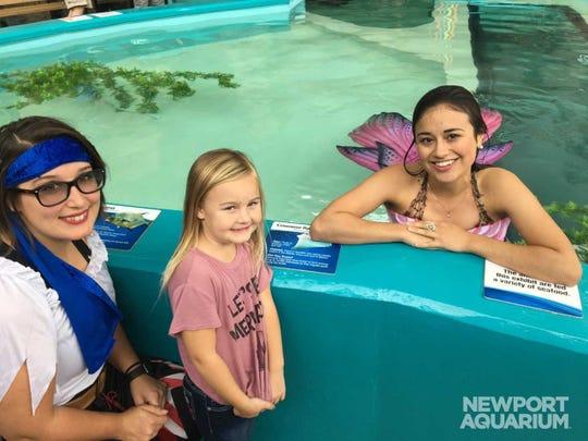 Mermaids are swimming into Newport Aquarium, enchanting guests September 28 – October 14.