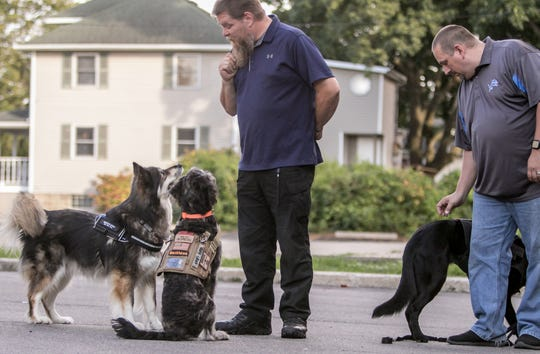 Veteran Service Dogs executive director Kirk Lanam, center, works with his dog Cipher, at left, and Blackhawk, while client and veteran Nick Leist works with his own dog, Tess, a German shepherd, in back of the downtown Howell office Friday, Sept. 20, 2019.