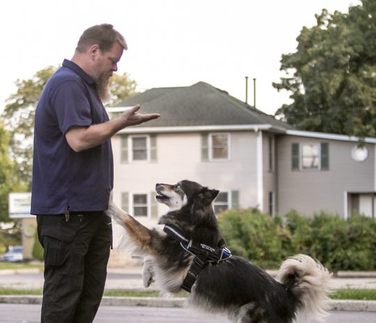 Kirk Lanam, executive director of Veteran Service Dogs, works with his dog Cipher, a Siberian husky, using hand gestures that the dog responds to in back of his Howell office Friday, Sept. 20, 2019.