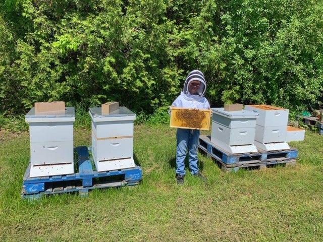 Miles Bergner,10, of Wauwatosa works on bees at a farm in Franksville. Miles and his dad, Bryan Bergner, created a business together, Highland Honey.