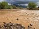 Imágenes de los daños provocados por los remanentes del huracán Lorena en el área de Apache Junction, Arizona, el lunes 23 de septiembre, 2019.