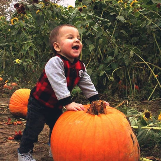 A little boy laughs next to a pumpkin at CornFun Corn Maze Adventure And Pumpkin Patch in Casco.