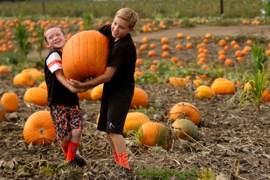 Pick the perfect pumpkin at one of our local pumpkin patch farms.