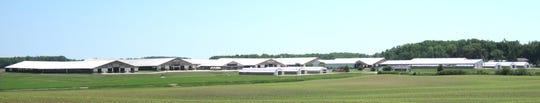 Siemers Holstein, Newton, Wisconsin.