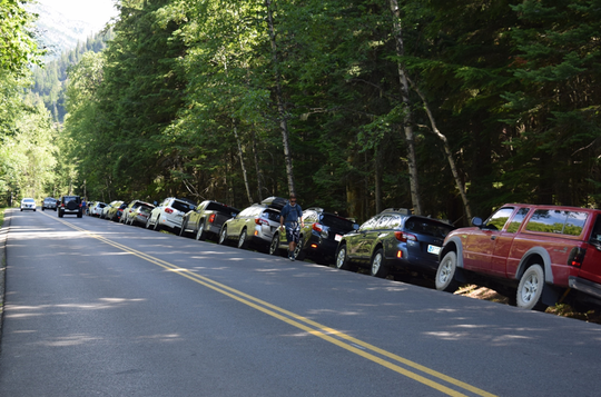 Parking spaces along Going to the Sun Road fill quickly,  prompting a long line of undesignated parking on the road's shoulder