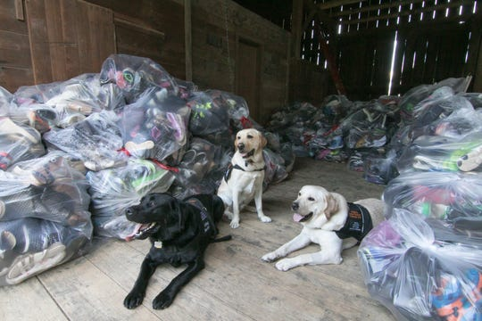 Seated Tuesday, Sept. 24, 2019 with bags of gently used shoes collected so far for a fundraiser benefitting Brighton Schools' social emotional learning dogs are, from left, 2-year-old Shadow, Duncan (3) and Scout (2). The dogs are social emotional learning dogs from Hornung Elementary, Maltby Intermediate and Hawkins Elementary, respectively.