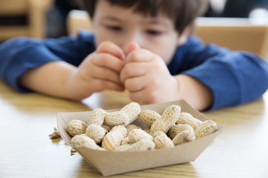 A boy opens peanuts to eat in a restaurant.