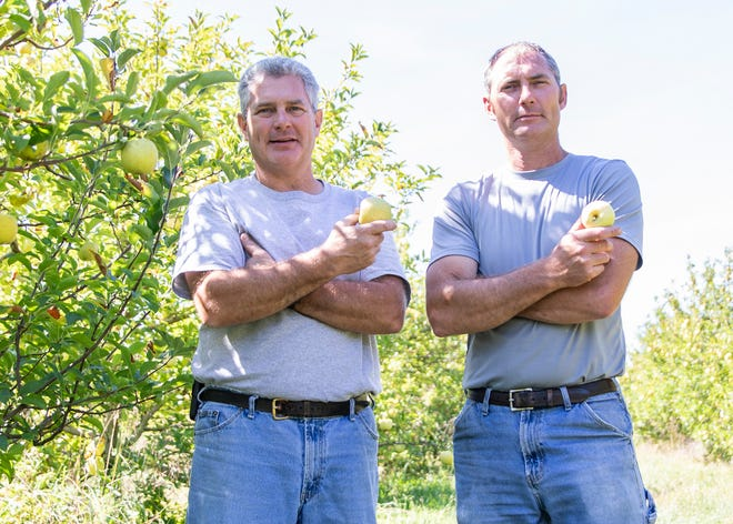 Fifth-generation farmers and  brothers Steve, left, and Mike Hirsch make up two of the four partners of Hirsch Fruit Farm and are involved in growing a variety of fruits, vegetables and other produce.