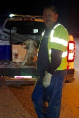 A dog trapped in an SRP canal grate was rescued by two SRP zanjeros on Aug. 21, 2019, in Chandler.