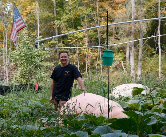 Tony Scott with one of his giant pumpkins at his home in Wappingers Falls on September 24, 2019. This is Tony's secondary pumpkin, and is estimated to weigh over 1000lbs.