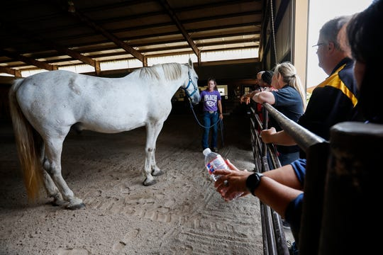 Dawn O'Connor, operator of Sac River Stables, talks about one of her horses during the Greene County agriculture tour on Wednesday, Sept. 25, 2019.