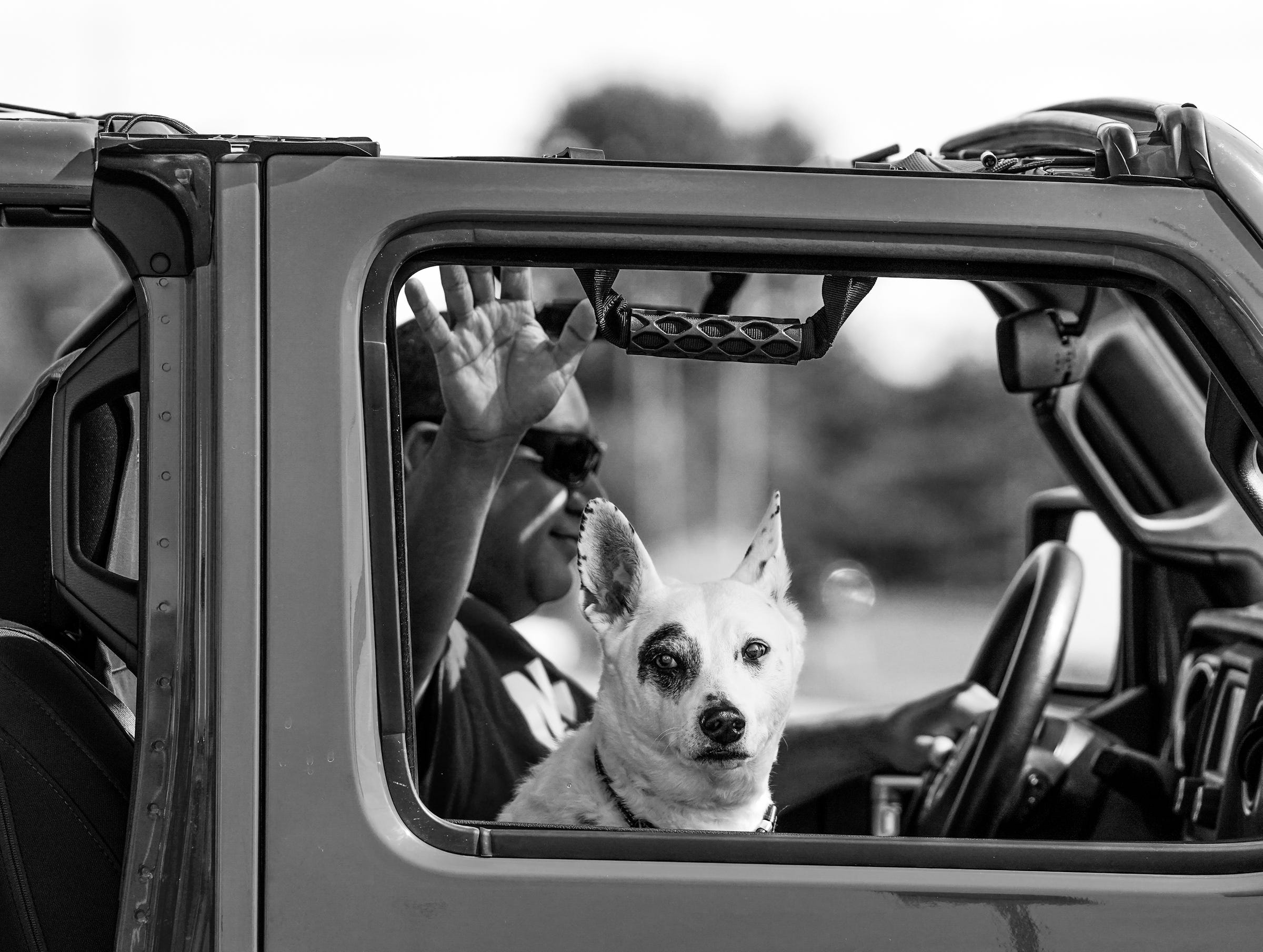 A man waves out the window with his dog while passing by UAW strikers in Flint.