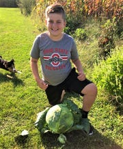 Mason Harder displays his 12.8 pound mega cabbage raised over the summer.