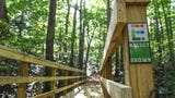 A quick look at the one mile trail loop at Nalley Brown Nature Park in Easley