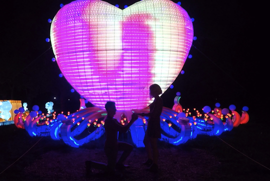 After matchingon Tinder, Erik Griggs and Jackie Silvis had their first date at China Lights atBoerner Botanical Gardens in Hales Cornersin 2016. On Sept. 20, 2019,that's where they got engaged.