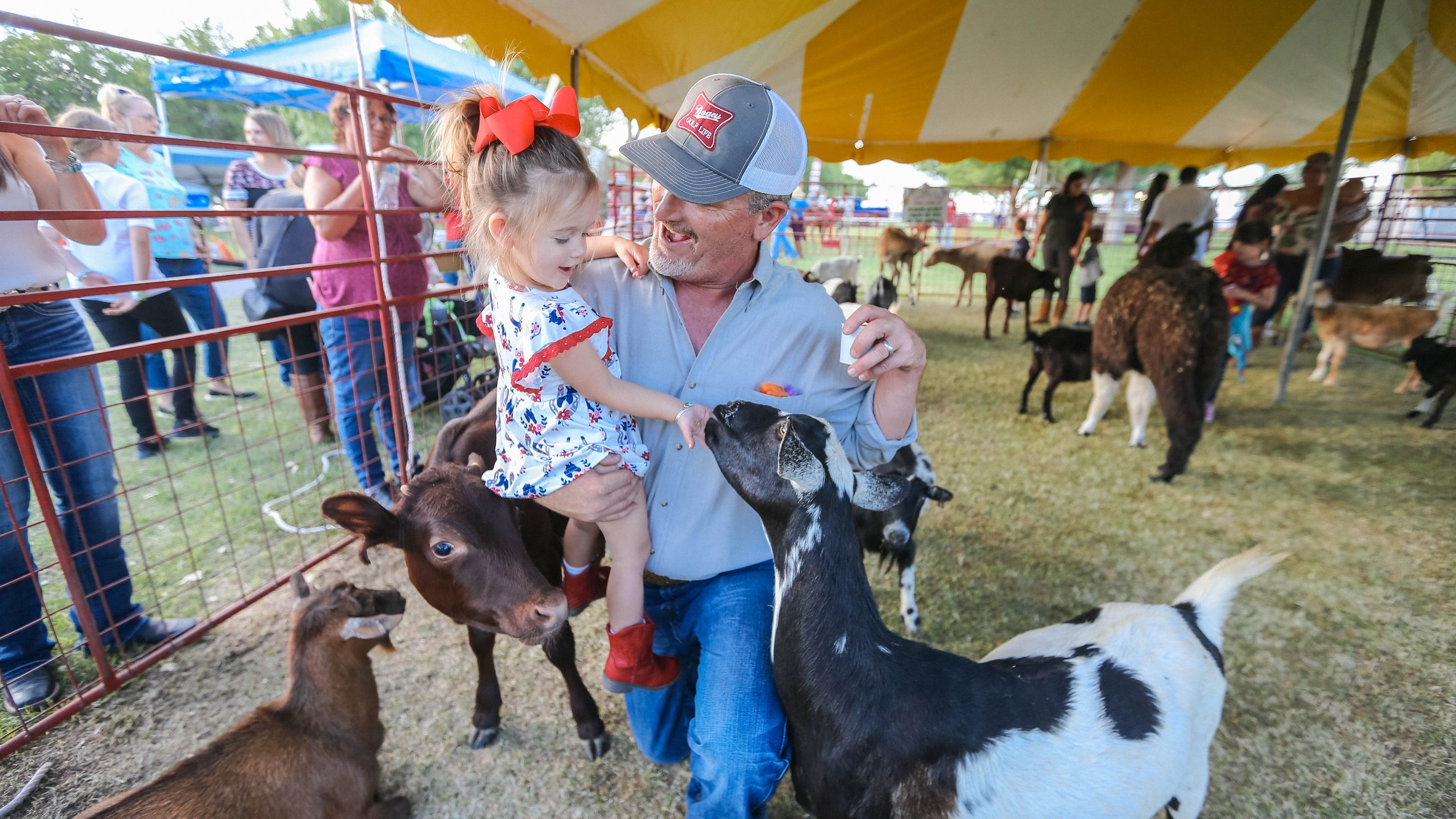 Southern New Mexico State Fair Amp Rodeo Top 5 Attractions