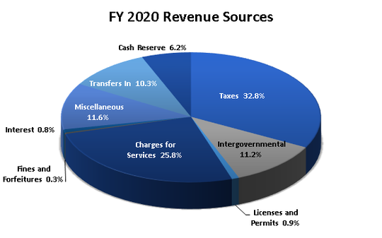 The chart illustrates revenue sources for the village of Ruidoso for Fiscal Year 2020.