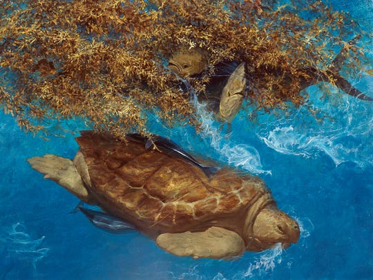 This turtle illustration by the great Stanley Meltzoff offers a window into the undersea world.