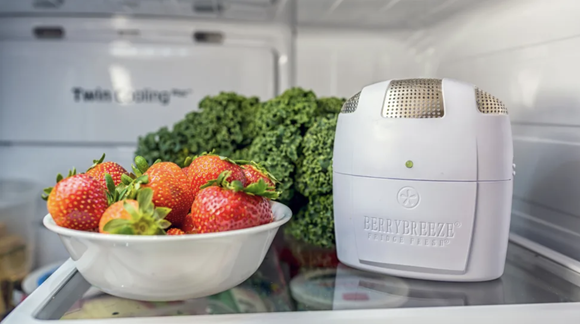 The Fridge Fresh uses activated oxygen to prevent bacteria from growing.
