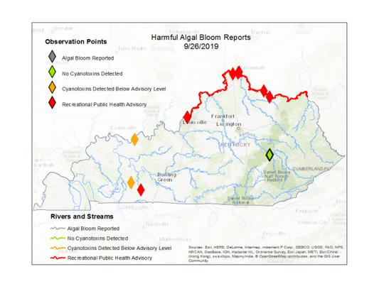 Maps showing algal bloom information in Kentucky.